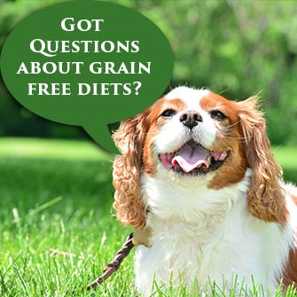 Grain Free Diets and Dilated Cardiomyopathy in Dogs
