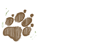 Iowa Veterinary Wellness Center