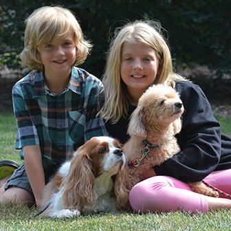 Recovery Veterinary Cases at Iowa Veterinary Wellness Center