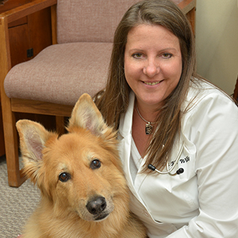 Canine Wellness care at Iowa Veterinary Wellness Center