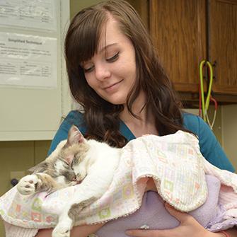 Iowa Veterinary Wellness Center