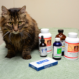 Herbal Medicine for dogs and cats located in Des Moines IA