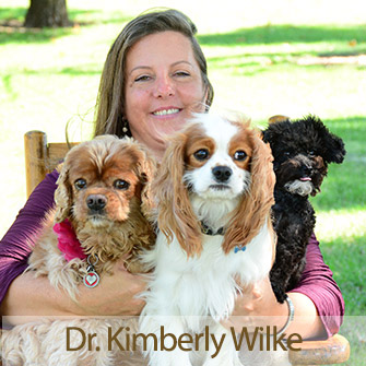 Meet Dr. Kimberly Wilke, Veterinarian at Iowa Veterinary Wellness Center