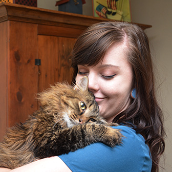 Phenomenal Senior Cat Veterinary Care Des Moines Vet Animal Hospital Des Short Hairstyles For Black Women Fulllsitofus